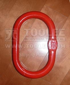 300 1509 Special Master Link